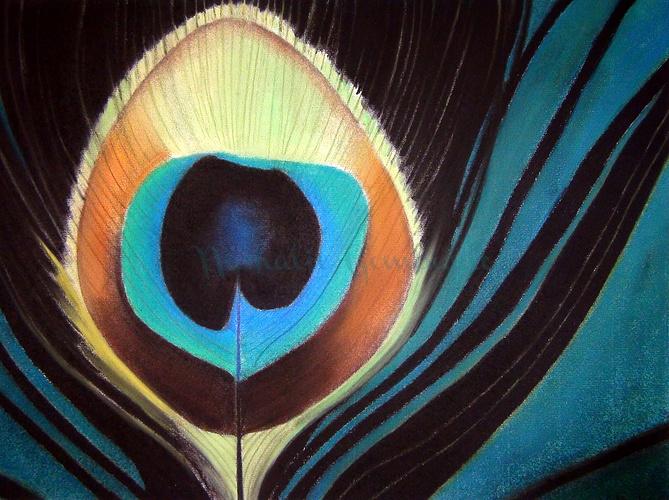Oeil de paon 0