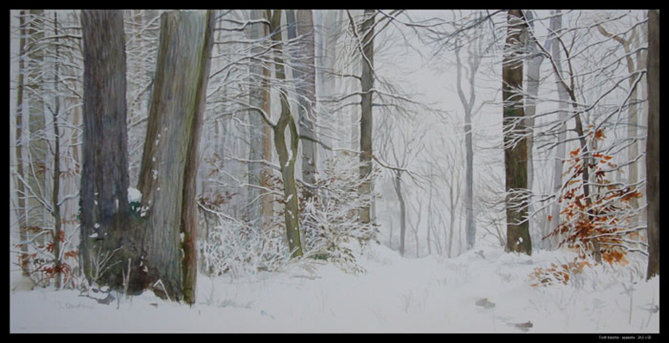 La forêt blanche 0
